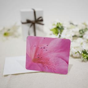 メッセージカード「マルバサツキ」の写真