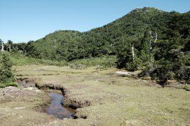 花之江河の写真