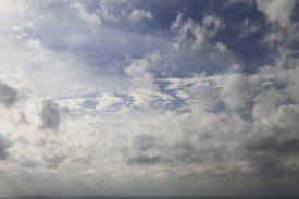 白谷雲水峡登山口に到着!の写真