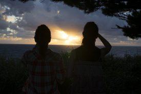 夕日タイムの写真