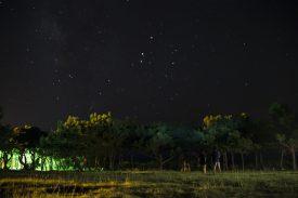 星空観察の写真