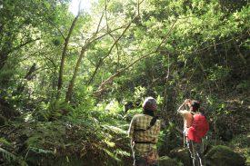 蛇之口滝登山口の写真