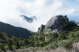 坊主岩の写真