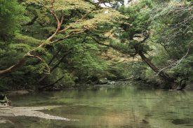 淀川小屋の写真